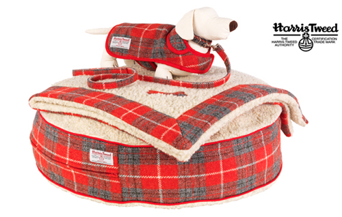LoveMyDog Hoxton Tartan Canine Couture Collection
