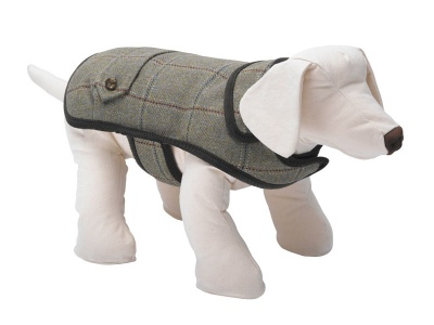 Digby designer dog coat