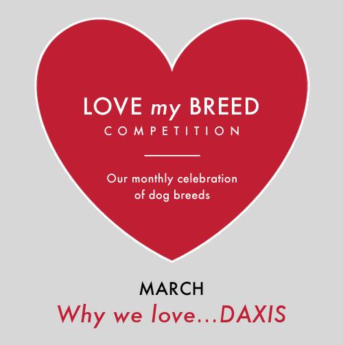 Love My Daxi
