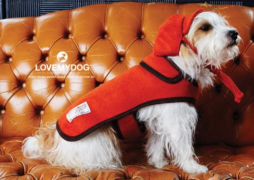 LoveMyDog AW14 Lookbook
