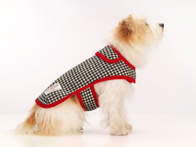 Ellesmere Red Harris Tweed Dog Coat