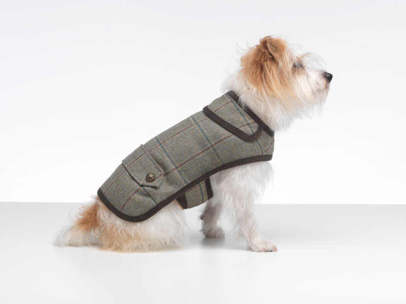 Digby dog coat from LoveMyDog