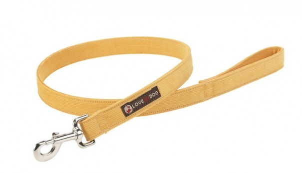 Lovemydog_Medium_spencer_yellow_lead_lg 2