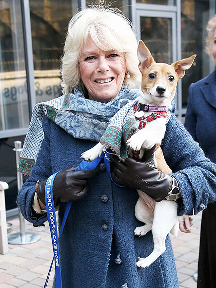 duchess-of-cornwall-01-435 2